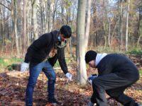 10b pflanzt neue Eichen im Stadtwald